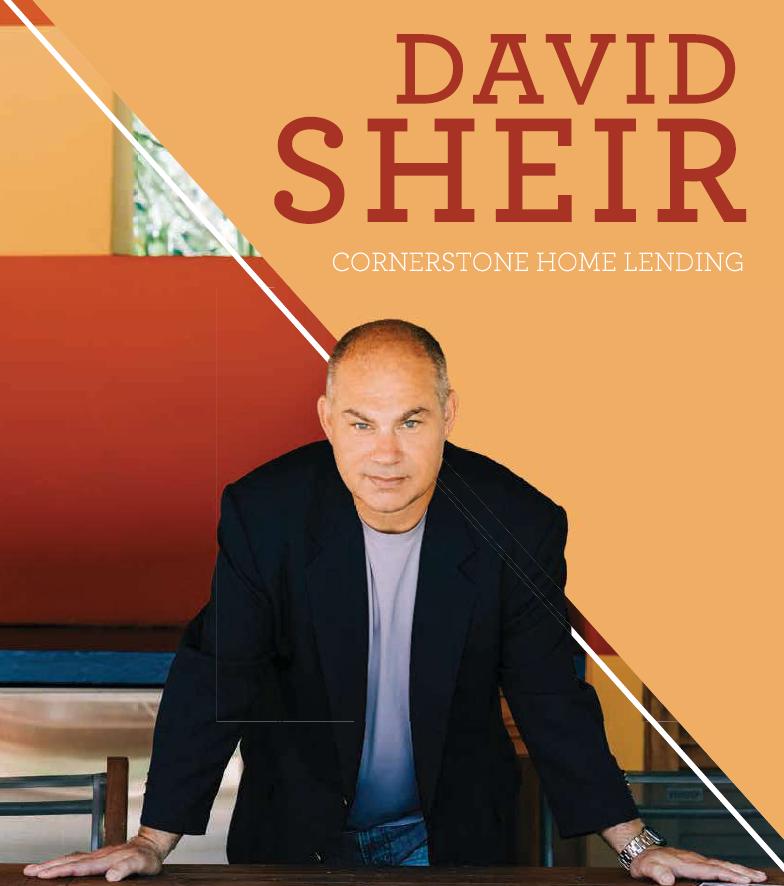 david sheer01